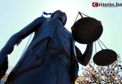 Repetir juicio a Rosa Elena de Lobo es una «déspota» resolución: CNA