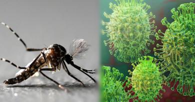 La pandemia, el dengue, fuegos forestales y la corrupción