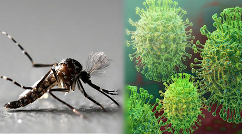 La pandemia, el dengue, fuegos forestales