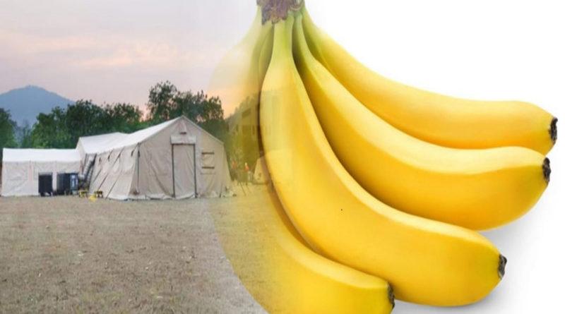 De bananos y hospitales