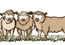 Patria ovejuna ─ Fábula de las ovejas, los lobos y la peste