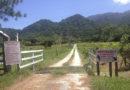 Refugio de animales a punto de desaparecer por el coronavirus en Jutiapa, Atlántida