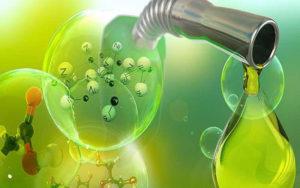 la bioenergía ofrece soluciones