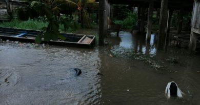 Copeco al fin reconoce que lluvias incrementarán por Eta a pesar del descenso de categoría