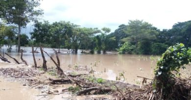 Campesinos reportan pérdidas totales de cultivos por paso de Iota y Eta