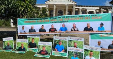 Corte de Apelaciones debe considerar estándares de DD.HH para garantizar la libertad de los defensores de Guapinol