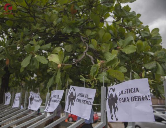Exhiben nuevas pruebas en caso de Berta Cáceres