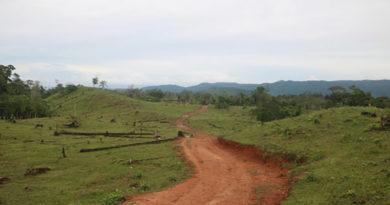 carretera en la Biosfera del Río Plátano